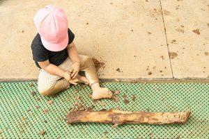本物の素材、水・土・砂・石・木・生物・火等で遊ぶ